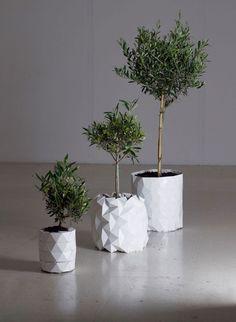 Una maceta que crece junto con las plantas | Notas | La Bioguía