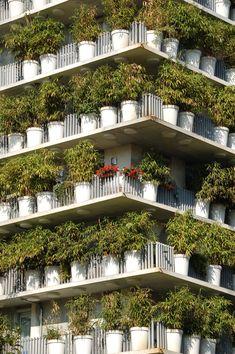 Seductive Camouflage - by architect Édouard François.