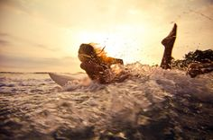 Female Surfer Fashion | beach surf girls | Surfing Visions