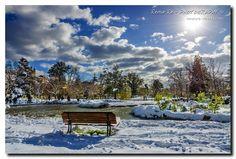 I Giardini Diaz ricoperti dalla grande nevicata del 2013