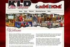 New Site – KLD Mini Herefords | EDJE Blogs Red & Black, Torn Parchment