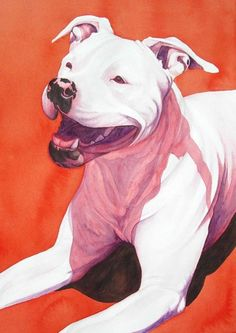 """MacHappy"" - American Bulldog (artwork by Lesley McVicar)"
