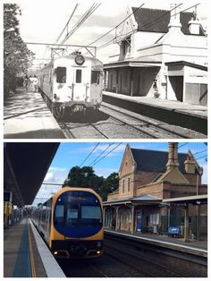 By Curt Flood] Sydney City, Local History, Emu, Blue Mountain, South Wales, Countries, Past, Australia, Times