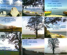 Niedziela ... Jesień 2014 ... więcej  .... więcej na blogach : Przemyślenia o poranku : http://pierwszamysl.blogspot.com/ o szukaniu pracy : http://bez-etatu.blogspot.com/ Widok z okna i komentarz poranka: http://jakimon.blogspot.com o miłosnych perypetiach : http://iruchna.blogspot.com