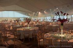 79 Best Wedding Venues Images Affordable Wedding Venues Hall Halle