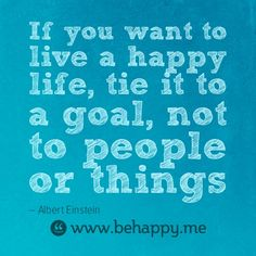 Goals and happiness