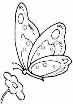 Free Online Colouring Pages Print And Colour In This Picture Of A Buttery Or Choose From 150 Others Within Our Coloring Library