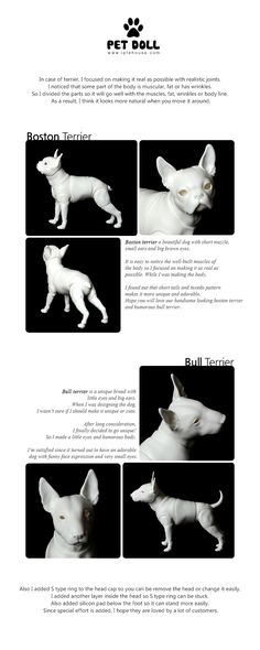 Iplehouse Boston Terrier and Bull Terrier  previews: http://iplehouse.com/home/bbs/board.php?bo_table=doll_preview&wr_id=330&nhn1=en&use_page= - Oh my goddess! I need that Bull Terrier so much! Been waiting so long for someone to do this and the Boston is adorable too! Iplehouse always amazes me with their attention to detail.
