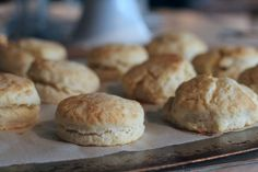 Overnight Angel Biscuits | Breads | Pinterest | Angel Biscuits ...