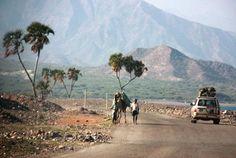 Djibouti, Africa!