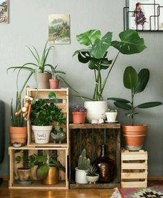 Retro home decor - Utterly stunning information. retro home decor ideas plants smashing suggestion reference 7616622911 generated on this day 20190325 Retro Home Decor, Diy Home Decor, Room Decor, Decoration Plante, Balcony Decoration, Deco Design, Wall Design, Home And Deco, Apartment Living