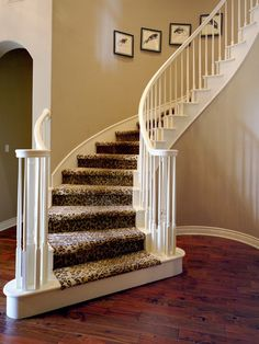 Staircase Photos Animal Print Stair Runner Design Ideas, Pictures, Remodel, and Decor - page 5 Wood Floor Stairs, Carpet Stairs, Leopard Carpet, Leopard Decor, Custom Area Rugs, Living Room Redo, Living Spaces, Stairs Architecture, Interior Exterior