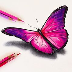 Picture of a pink butterfly drawn using colored pencils. Butterfly coloured penc… Picture of a pink butterfly drawn using colored pencils. Pencil Drawings Of Animals, Cool Art Drawings, Realistic Drawings, Art Drawings Sketches, Colorful Drawings, Drawing Ideas, Horse Drawings, Drawing Faces, Drawing Tutorials