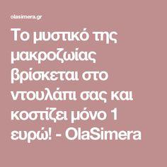 Το μυστικό της μακροζωίας βρίσκεται στο ντουλάπι σας και κοστίζει μόνο 1 ευρώ! - OlaSimera