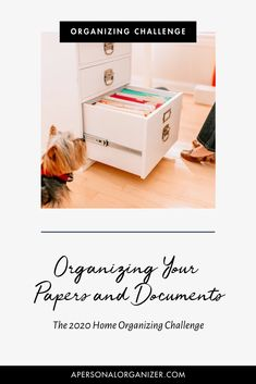 "How to Organize Your Papers And Documents  One of the biggest questions we get asked on the blog and on social media is ""how do I organize my paper and documents?!"" Head to the blog to grab our best tips on how to organize all that paper. Polymer Clay Kawaii, Polymer Clay Animals, Home Management Binder, Paper Clutter, Binder Organization, Personal Organizer, Polymer Clay Miniatures, Organizing Your Home, Fimo"