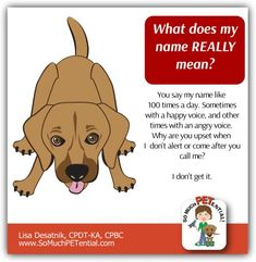 Cincinnati certified dog trainer Lisa Desatnik, CPDT-KA, CPBC offers a dog training tip for teaching your dog to come and/or alert to his name.