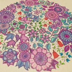 Secret Garden: An Inky Treasure Hunt and Coloring Book: Johanna Basford: 9781780671062: Amazon.com: Books By Kourtney Ferro on May 14, 2015