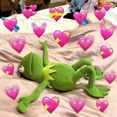 kermit memes Kermits in Love
