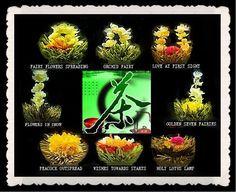 18 Sorten - Teerosen Erblühtee Artisan Tee Blooming Tea Erblüh Teekugel Blumen | eBay