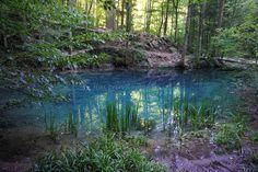 blog DSC02655 Mountains, Nature, Blog, Travel, Park, Naturaleza, Viajes, Blogging, Destinations