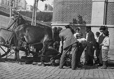 1910 - Cavalo da carroça da limpeza pública caído, na rua 25 março esquina com rua Lourenço Gnecco. Foto de Vincenzo Pastore. Acervo do Instituto Moreira Sales.
