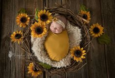 Baby Ideas Newborn Baby Photos, Newborn Shoot, Baby Girl Newborn, Fall Newborn Pictures, Sunflower Nursery, Sunflower Baby Showers, Baby Girl Pictures, Newborn Baby Photography, Baby Time