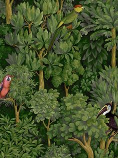 This wallpaper from the Amazonia Collection by Holden Decor will add a lush tropical feel to your walls. Botanist is a painterly design featuring a forest of trees with birds such as parrots and toucans hidden within, all in beautiful detail and rich colours. This wallpaper could be used to create a striking feature wall or to decorate an entire room. This high quality wallpaper benefits from being a paste the wall paper. Teal Wallpaper, How To Hang Wallpaper, Tropical Wallpaper, Wallpaper Samples, Wallpaper Online, Tropical Colors, Tropical Birds, Exotic Birds, Jungle Tree