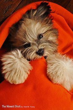 All snuggled up!