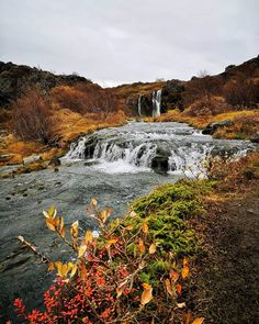 A great place to wander around and get close to nature. Iceland Waterfalls, Green Landscape, Closer To Nature, Beautiful Waterfalls, Iceland Travel, Famous Places, Great Places, Wander, Travel Guide