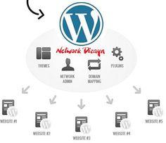 Guney59 Paylaşım : WordPress Multisite Nedir?