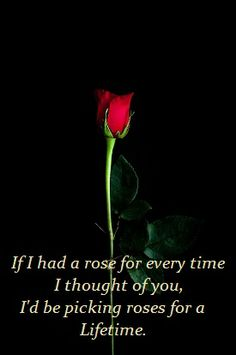 If I had a rose for every time...