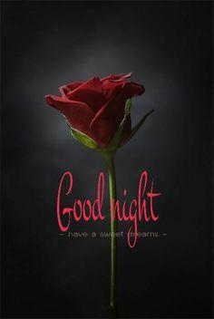 Good night everyone. Good Night Poems, Good Night Couple, Romantic Good Night, Good Night Everyone, Good Night Wishes, Good Morning Good Night, Greetings For The Day, Good Night Greetings, Morning Greetings Quotes