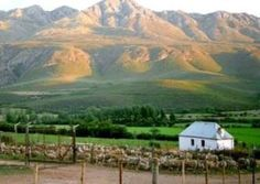 Swartberg,South Africa...