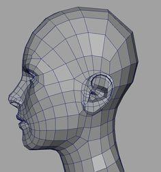 ear 3d topo - Google Search