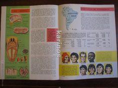 Enciclopedias de segunda mano: Enciclopedia Estudiantil Diseuropa 1962 Completa (209 Fasciculos) f3 - Foto 35 - 48072937