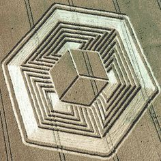 crop circles 2015 - Google Search