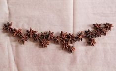 With its spicy fragrance and stellar form, star anise is perfect for holiday decor. Here are two garlands that are quick and easy enough to make at the las