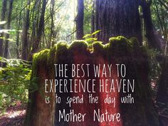 if you want to know God, you must tap into the living; He is in every Man, plant, beast  [QUOTE, Spirituality:  'The best way to experience Heaven is to spend the day with Mother Nature.']