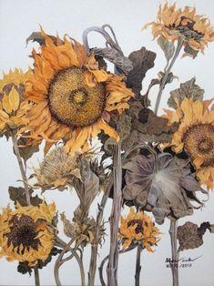 The Common Thread   Watercolor sunflowers Botanical Drawings, Botanical Prints, Art Floral, Watercolor Flowers, Watercolor Paintings, Art Aquarelle, Sunflower Art, Art Japonais, Arte Pop