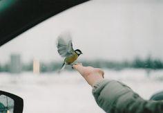 by Nastya Jour, via Flickr