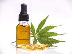 Defining High-Quality CBD: A Consumers Guide To Purchasing CBD
