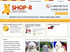 shop-r.ru Analytics Stats
