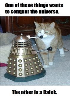 CATS VS. DALEKS. Original photo posted on The Torchwood Institute Blog (torchwoodblog.blogspot.com/2006/03/cats-vs-daleks.html) by Michael Lee. It's one of those remote control new series Daleks. ↂ  Daleks are not robots, they are a race of alien squid-like mutants from planet Skaro that inhabit their mechanical shells in a manner more akin to cyborgs. With an unquestioning belief in their total superiority, their sole purpose is to exterminate all other lifeforms.
