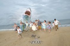 """Bridal Wave"" brings wedding crasher shark to beach wedding in Fenwick Island Delaware:  https://www.roxbeachweddings.com/"