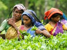 Image result for tribes of west bengal