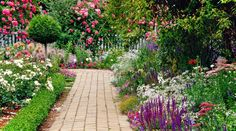 cottage garden ideas with brick pavements as the path to the cottage area of your garden