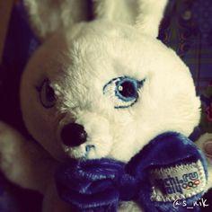 olympic symbol 2014 Photo Today, Olympics, Teddy Bear, Symbols, Animals, Animales, Animaux, Icons, Teddybear