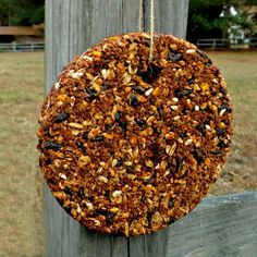 Hanging treat..Cold weather means a shortage of weeds and bugs for your chickens to scratch for. Bored chickens can be prone to pecking and bullying each other. This easy to make Seed Treat Block will keep your chickens happy and busy, as well as provide them with some warming grains and other ingredients to help them through the cold weather.