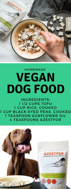 Homemade dog food recipe azestfor pets pinterest dog food homemade vegan dog food forumfinder Image collections