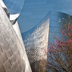 a wonderful photographic 'slice' of Cdn architect Frank Gehry's Disney Concert Hall in downtown Los Angeles >>>  Photo by Hedley Jones